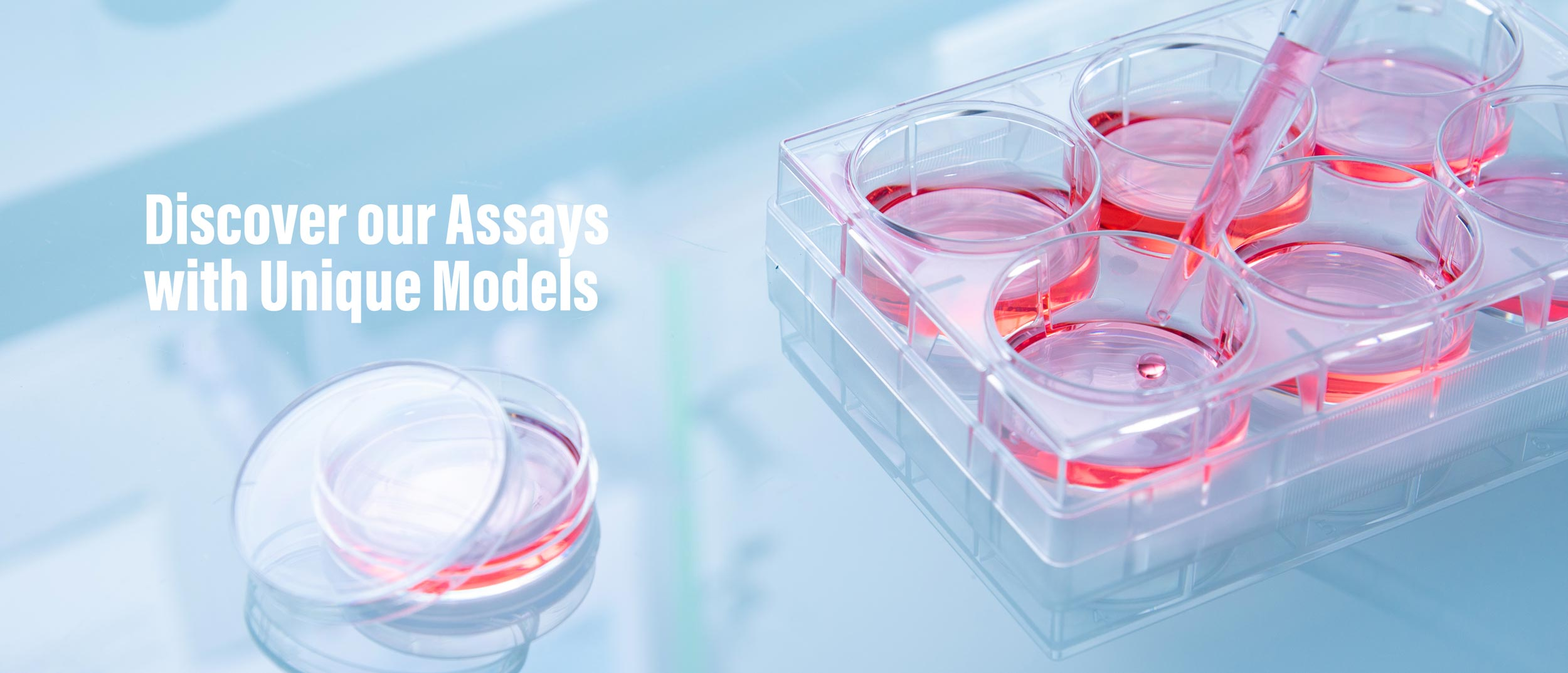 Assays with unique models