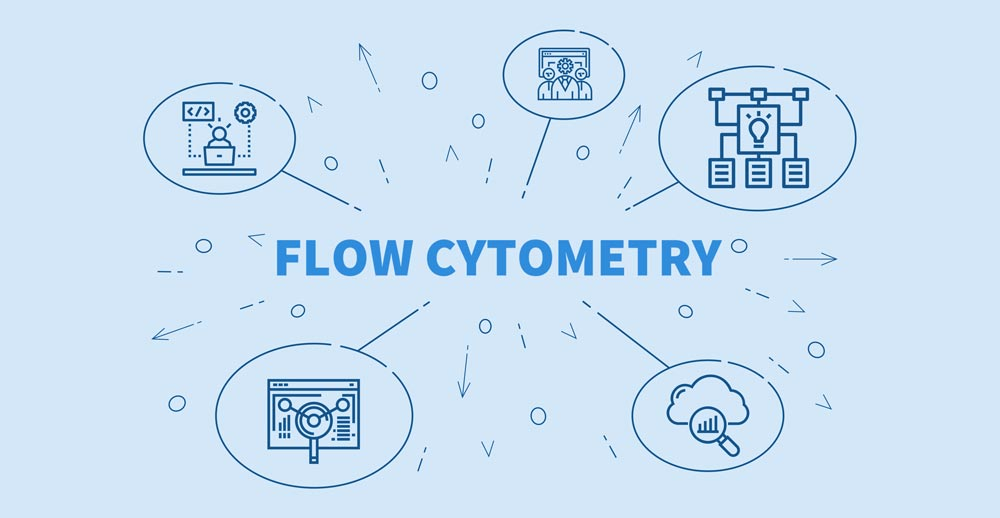 Flow Cytometry Process
